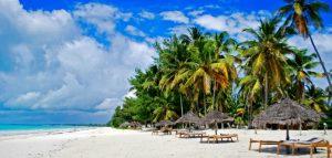 Zanzibar beach tropical island