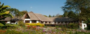 lodges tanzania farm house